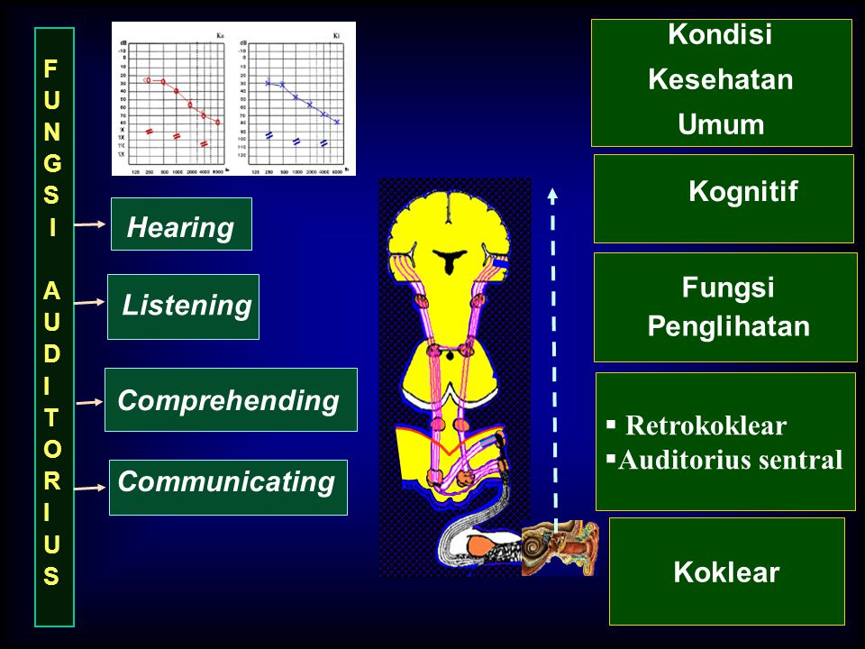 Hearing Listening Comprehending Communicating F U N G S I A U D I T O R I U S Koklear  Retrokoklear  Auditorius sentral Fungsi Penglihatan Kognitif