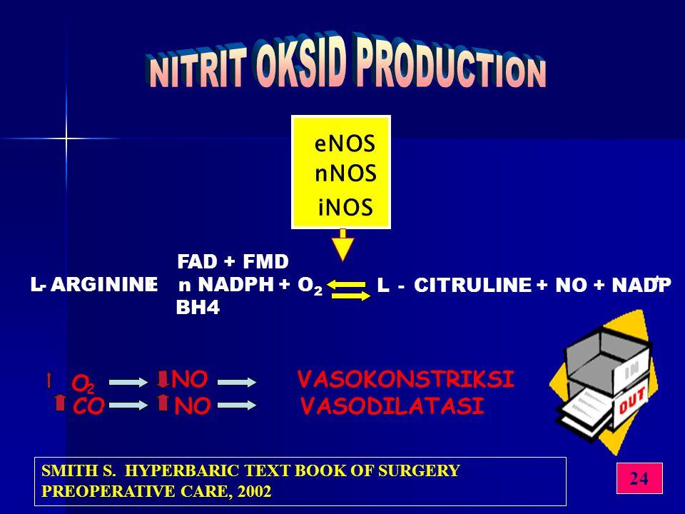eNOS nNOS iNOS FAD + FMD L-ARGININE+n NADPH + O 2 L-CITRULINE + NO + NADP + BH4 O 2 NO VASOKONSTRIKSI CO 2 NO VASODILATASI 24 SMITH S. HYPERBARIC TEXT