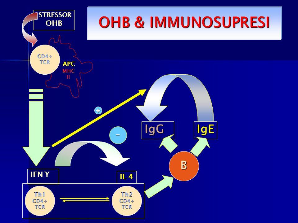 CD4+TCR Th1CD4+TCRTh2CD4+TCR B STRESSOR OHB IFN Ƴ IgE IL 4 + - APC MHCII OHB & IMMUNOSUPRESI IgG