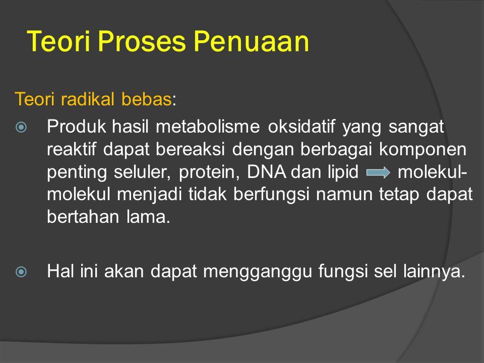 Teori Proses Penuaan Teori radikal bebas:  Produk hasil metabolisme oksidatif yang sangat reaktif dapat bereaksi dengan berbagai komponen penting sel