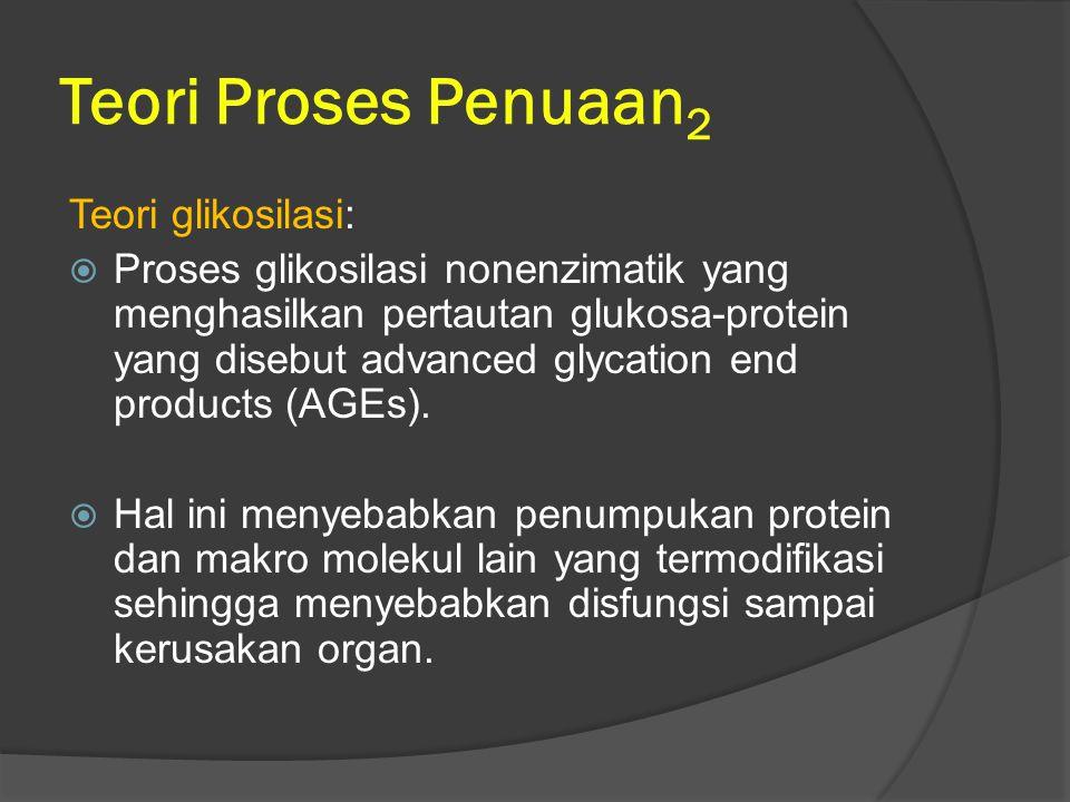 Teori Proses Penuaan 2 Teori glikosilasi:  Proses glikosilasi nonenzimatik yang menghasilkan pertautan glukosa-protein yang disebut advanced glycatio