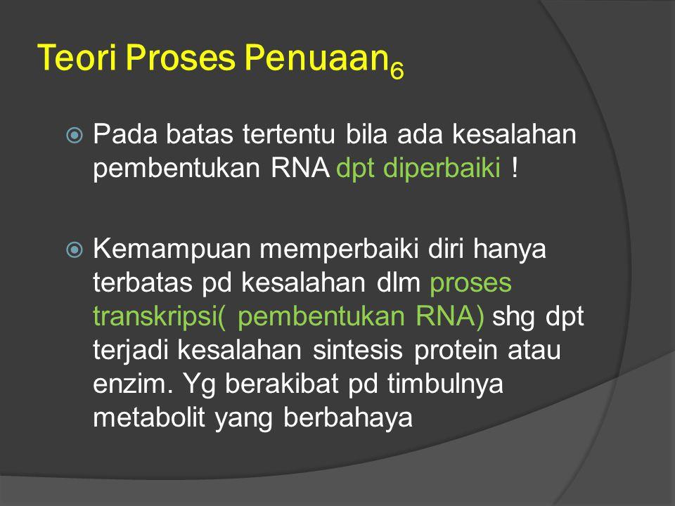 Teori Proses Penuaan 6  Pada batas tertentu bila ada kesalahan pembentukan RNA dpt diperbaiki !  Kemampuan memperbaiki diri hanya terbatas pd kesala