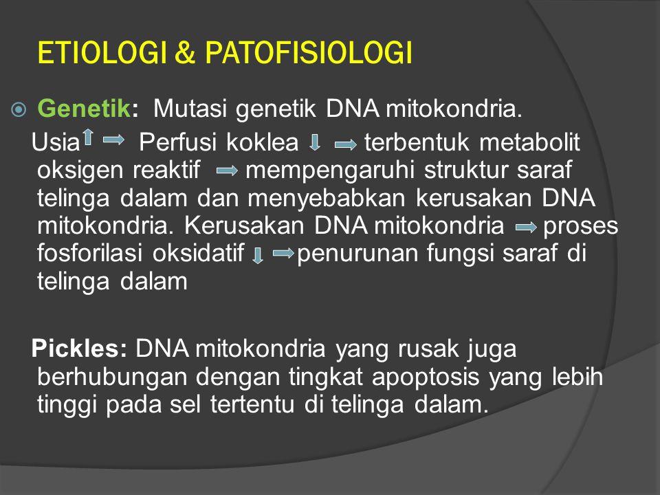 ETIOLOGI & PATOFISIOLOGI  Genetik: Mutasi genetik DNA mitokondria. Usia Perfusi koklea terbentuk metabolit oksigen reaktif mempengaruhi struktur sara