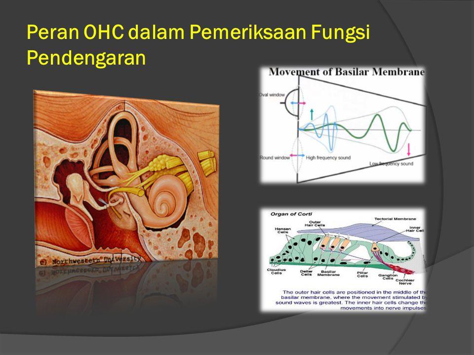 Peran OHC dalam Pemeriksaan Fungsi Pendengaran