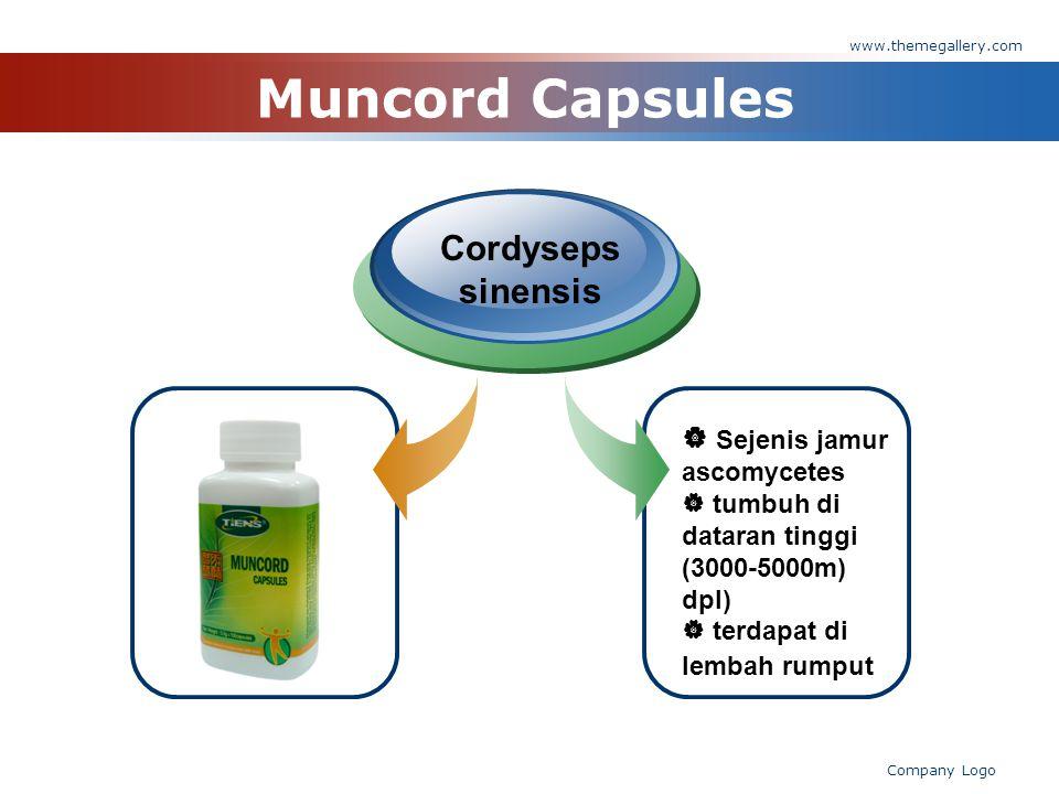 www.themegallery.com Company Logo Muncord Capsules Cordyseps sinensis  Sejenis jamur ascomycetes  tumbuh di dataran tinggi (3000-5000m) dpl)  terdapat di lembah rumput