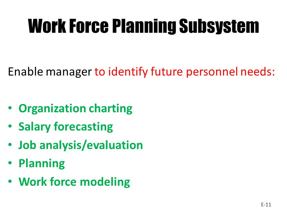 Work Force Planning Subsystem Enable manager to identify future personnel needs: Organization charting Salary forecasting Job analysis/evaluation Planning Work force modeling E-11