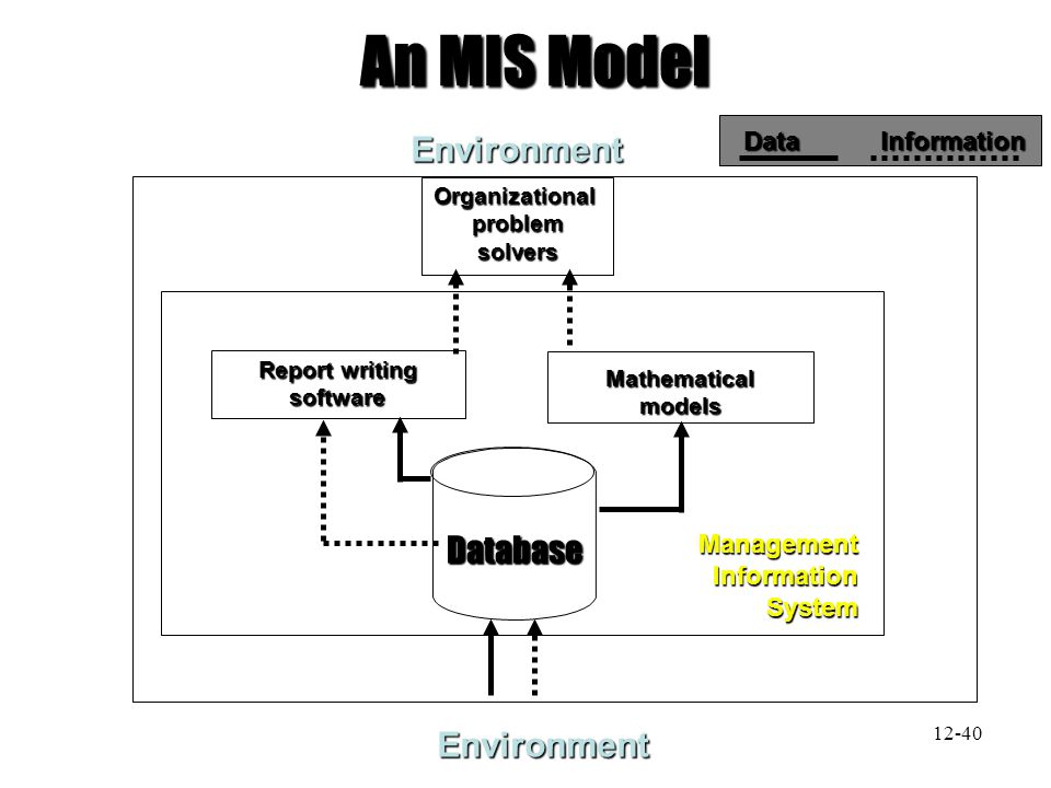 EnvironmentOrganizationalproblemsolvers Report writing software Mathematicalmodels ManagementInformationSystem An MIS Model Data Information Environme
