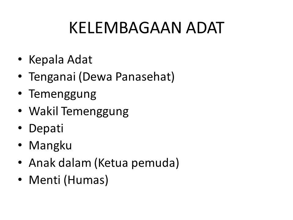 KELEMBAGAAN ADAT Kepala Adat Tenganai (Dewa Panasehat) Temenggung Wakil Temenggung Depati Mangku Anak dalam (Ketua pemuda) Menti (Humas)