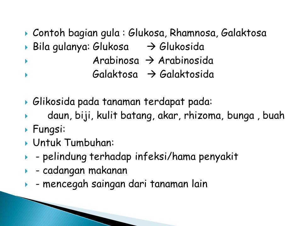  Contoh bagian gula : Glukosa, Rhamnosa, Galaktosa  Bila gulanya: Glukosa  Glukosida  Arabinosa  Arabinosida  Galaktosa  Galaktosida  Glikosid