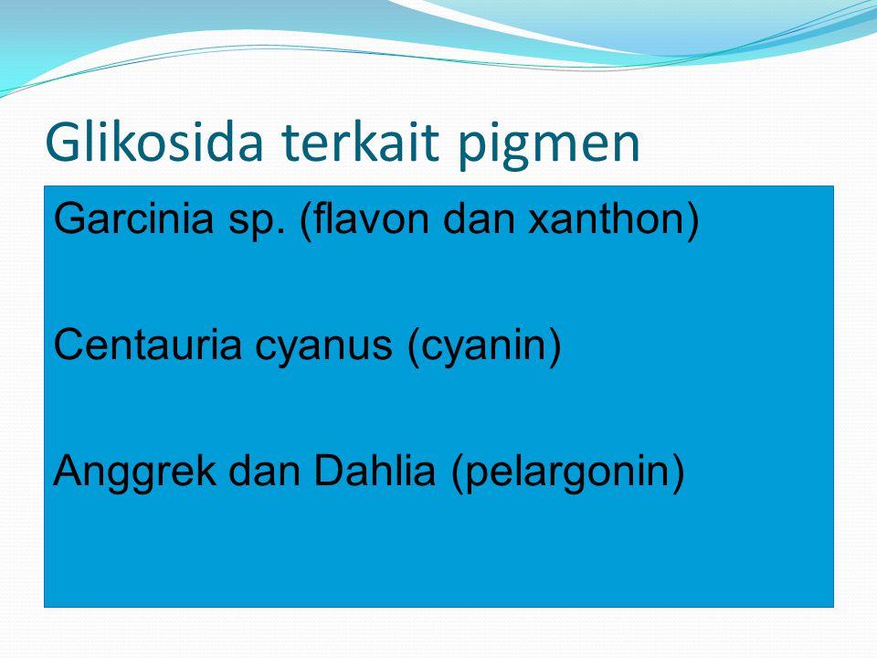 Glikosida terkait pigmen Garcinia sp. (flavon dan xanthon) Centauria cyanus (cyanin) Anggrek dan Dahlia (pelargonin)