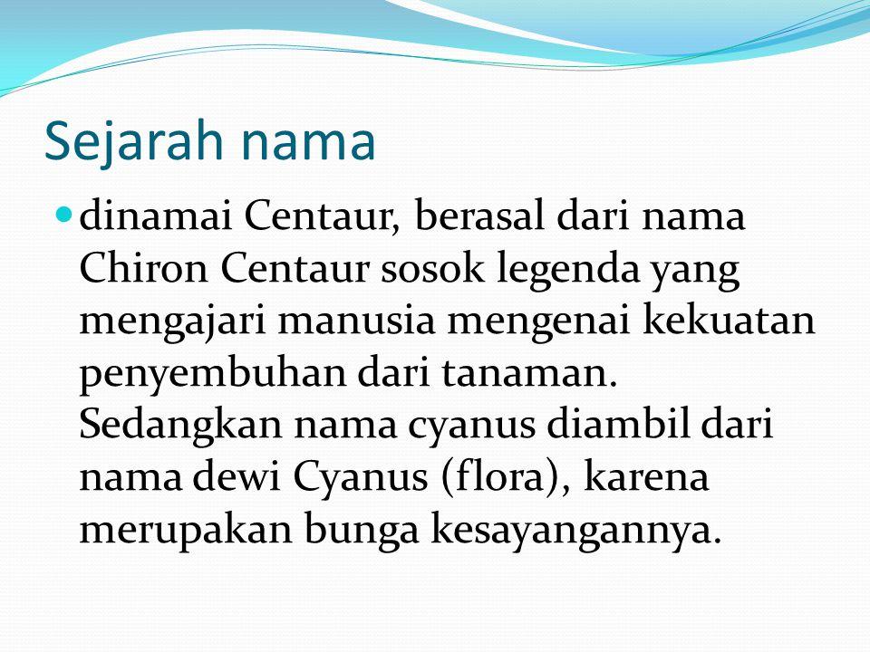 Sejarah nama dinamai Centaur, berasal dari nama Chiron Centaur sosok legenda yang mengajari manusia mengenai kekuatan penyembuhan dari tanaman. Sedang
