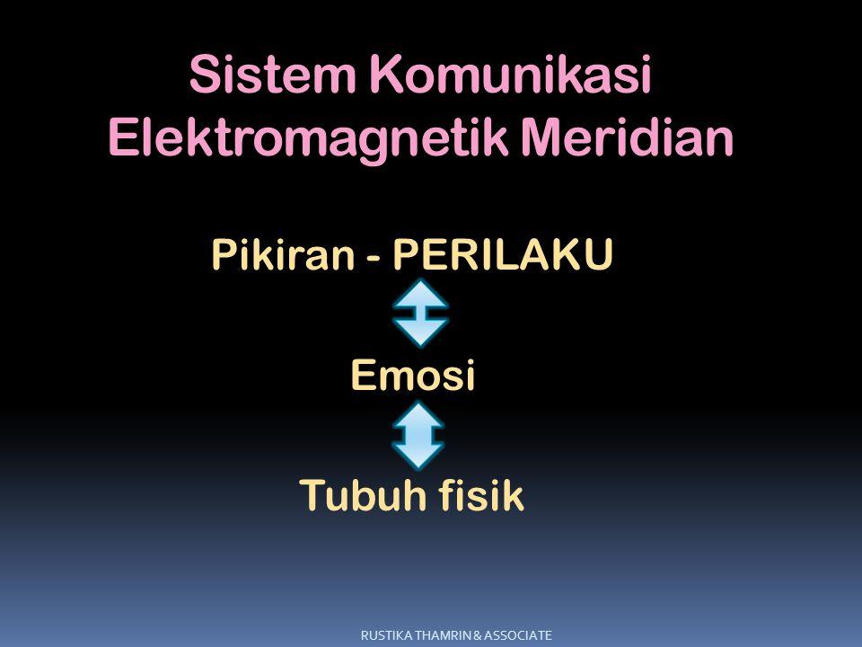 Sistem Komunikasi Elektromagnetik Meridian Pikiran - PERILAKU Emosi Tubuh fisik RUSTIKA THAMRIN & ASSOCIATE
