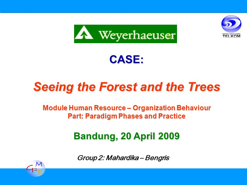 G2G2 M B CASE: Seeing the Forest and the Trees Module Human Resource – Organization Behaviour Part: Paradigm Phases and Practice Bandung, 20 April 2009 Group 2: Mahardika – Bengris
