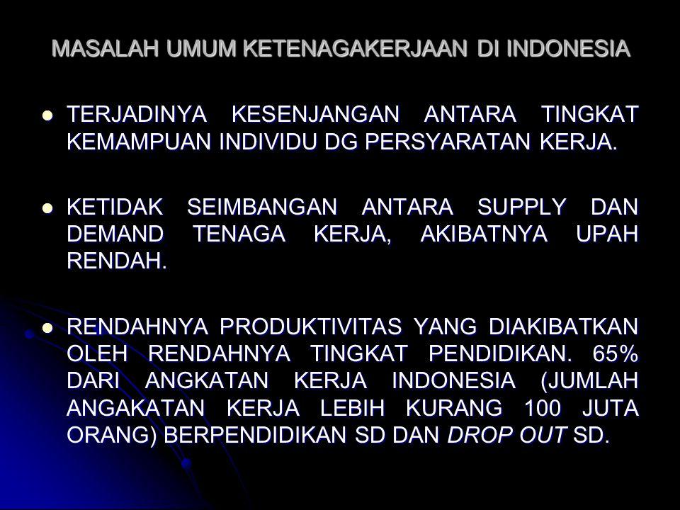 MASALAH UMUM KETENAGAKERJAAN DI INDONESIA TERJADINYA KESENJANGAN ANTARA TINGKAT KEMAMPUAN INDIVIDU DG PERSYARATAN KERJA. TERJADINYA KESENJANGAN ANTARA
