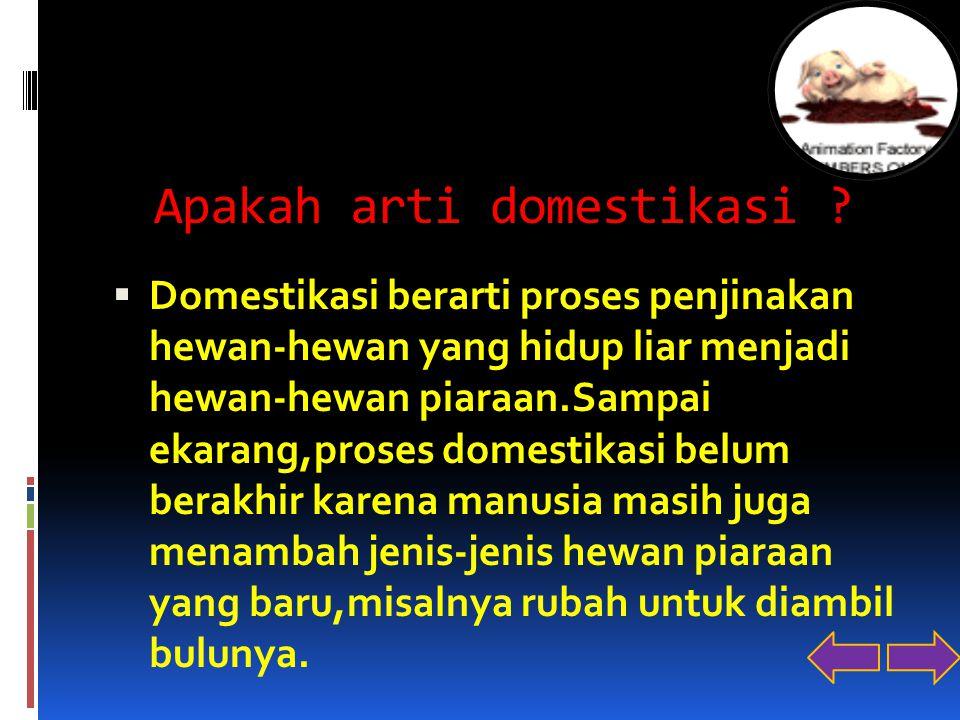 Apakah arti domestikasi ?  Domestikasi berarti proses penjinakan hewan-hewan yang hidup liar menjadi hewan-hewan piaraan.Sampai ekarang,proses domest