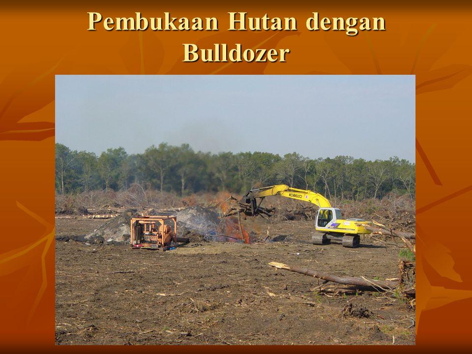 Pembukaan Hutan Cara Mekanis Pembuatan jalan rintisan : bulldozer Pembuatan jalan rintisan : bulldozer Penebangan pohon : chainsaw Penebangan pohon :