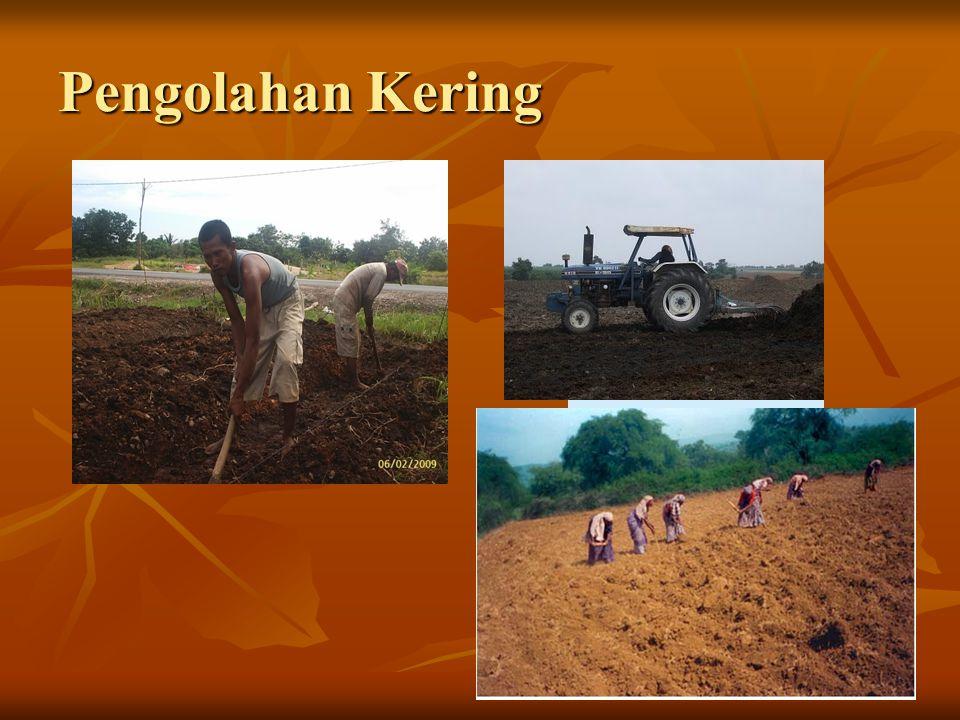 Macam Pengolahan Tanah 1. Pengolahan Tanah secara mekanis  traktor 2. Pengolahan Tanah Minimum  untuk tanah gembur + mulsa 3. Pengolahan Tanah Konse