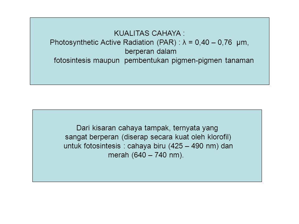 KUALITAS CAHAYA : Photosynthetic Active Radiation (PAR) : λ = 0,40 – 0,76 μm, berperan dalam fotosintesis maupun pembentukan pigmen-pigmen tanaman Dar