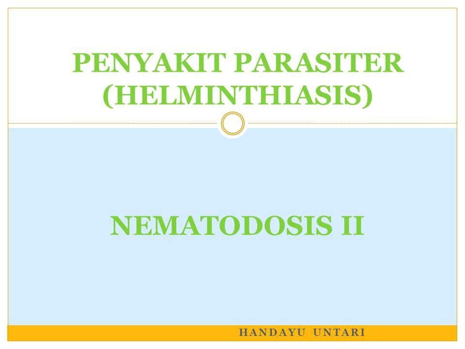 HANDAYU UNTARI PENYAKIT PARASITER (HELMINTHIASIS) NEMATODOSIS II