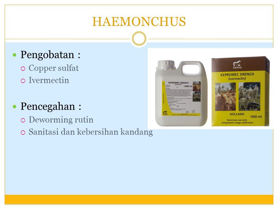 HAEMONCHUS Pengobatan :  Copper sulfat  Ivermectin Pencegahan :  Deworming rutin  Sanitasi dan kebersihan kandang