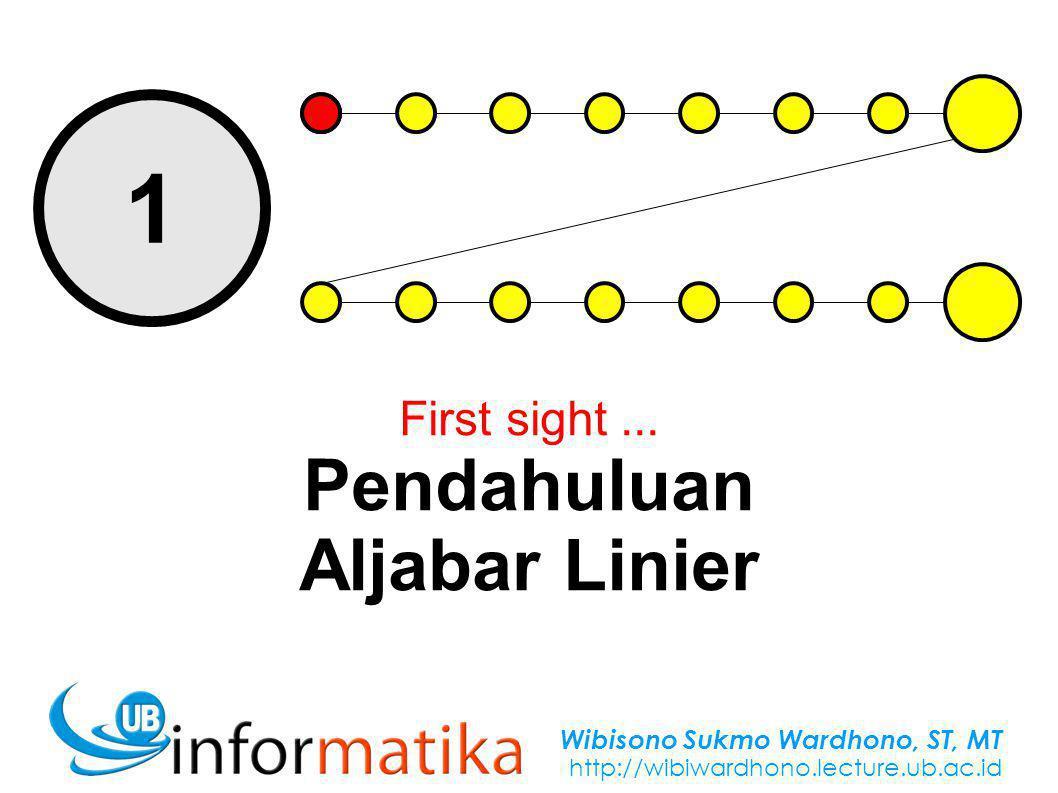 Wibisono Sukmo Wardhono, ST, MT http://wibiwardhono.lecture.ub.ac.id 1 First sight...