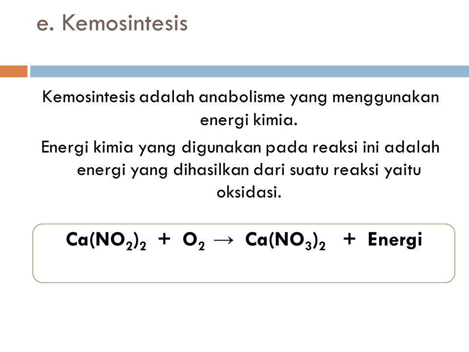e. Kemosintesis Kemosintesis adalah anabolisme yang menggunakan energi kimia. Energi kimia yang digunakan pada reaksi ini adalah energi yang dihasilka