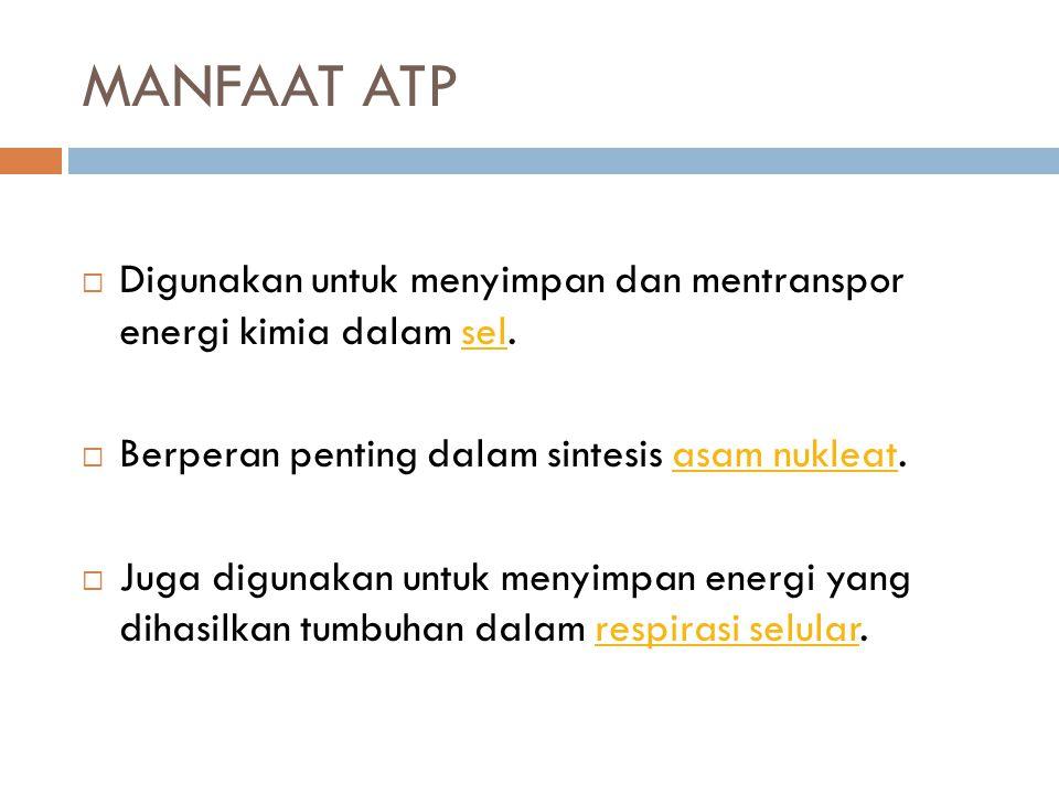 MANFAAT ATP  Digunakan untuk menyimpan dan mentranspor energi kimia dalam sel.sel  Berperan penting dalam sintesis asam nukleat.asam nukleat  Juga