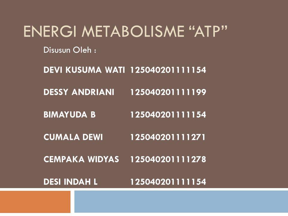 "ENERGI METABOLISME ""ATP"" Disusun Oleh : DEVI KUSUMA WATI125040201111154 DESSY ANDRIANI125040201111199 BIMAYUDA B125040201111154 CUMALA DEWI12504020111"
