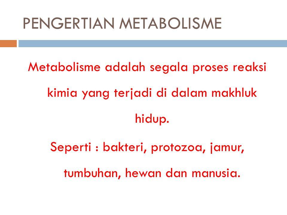PENGERTIAN METABOLISME Metabolisme adalah segala proses reaksi kimia yang terjadi di dalam makhluk hidup. Seperti : bakteri, protozoa, jamur, tumbuhan