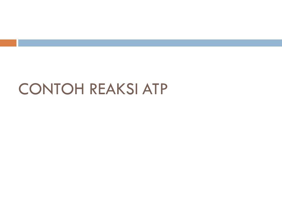 CONTOH REAKSI ATP