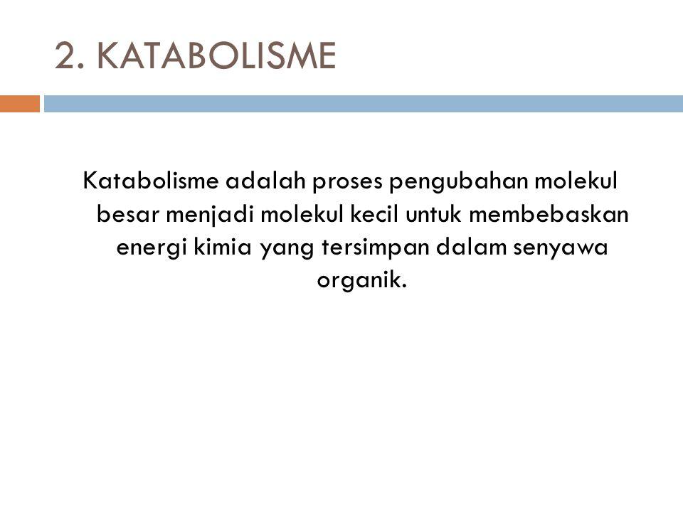 2. KATABOLISME Katabolisme adalah proses pengubahan molekul besar menjadi molekul kecil untuk membebaskan energi kimia yang tersimpan dalam senyawa or