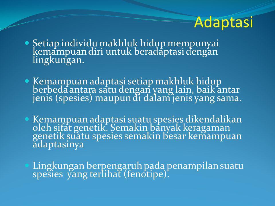 Adaptasi Setiap individu makhluk hidup mempunyai kemampuan diri untuk beradaptasi dengan lingkungan. Kemampuan adaptasi setiap makhluk hidup berbeda a