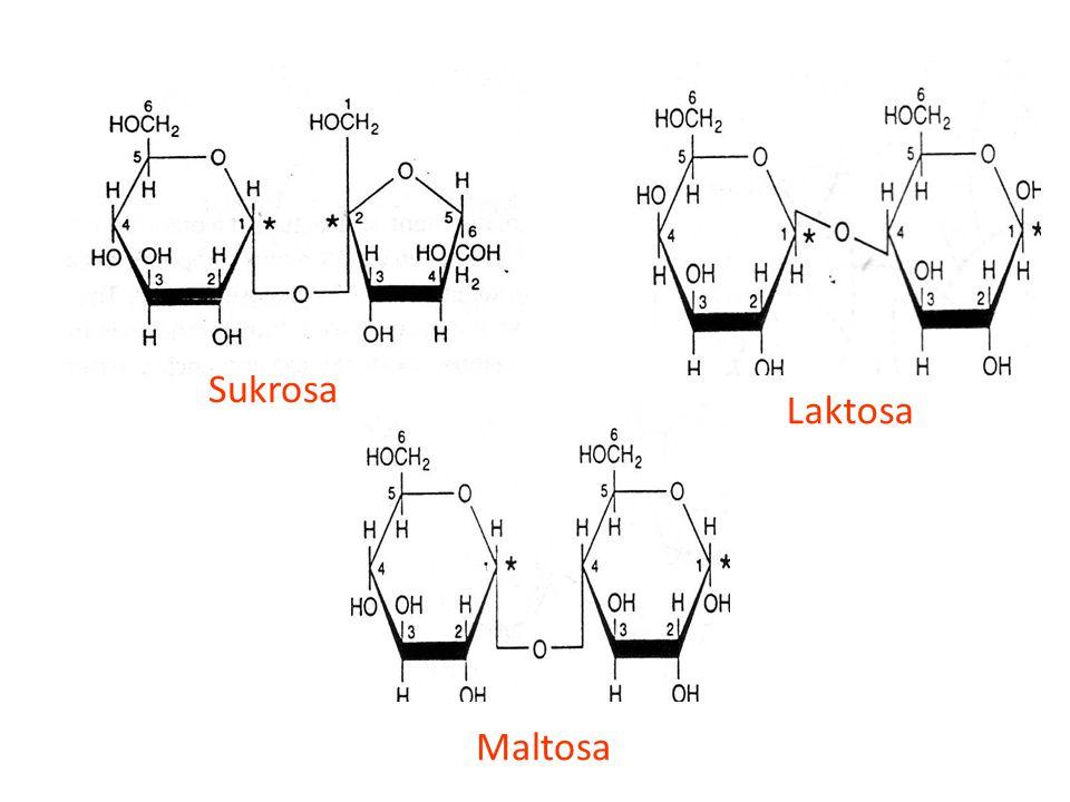 Laktosa Sukrosa Maltosa