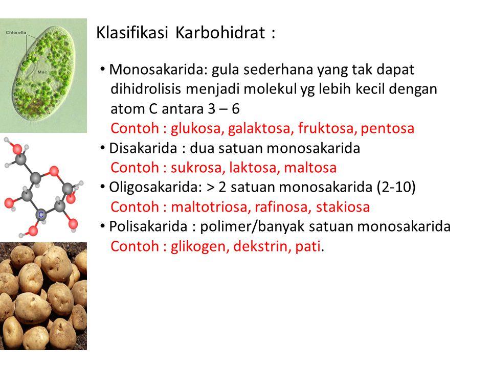 Ikatan β 1,4 Glikosidik pd Selobiosa