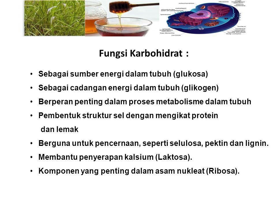 Sebagai sumber energi dalam tubuh (glukosa) Sebagai cadangan energi dalam tubuh (glikogen) Berperan penting dalam proses metabolisme dalam tubuh Pembe