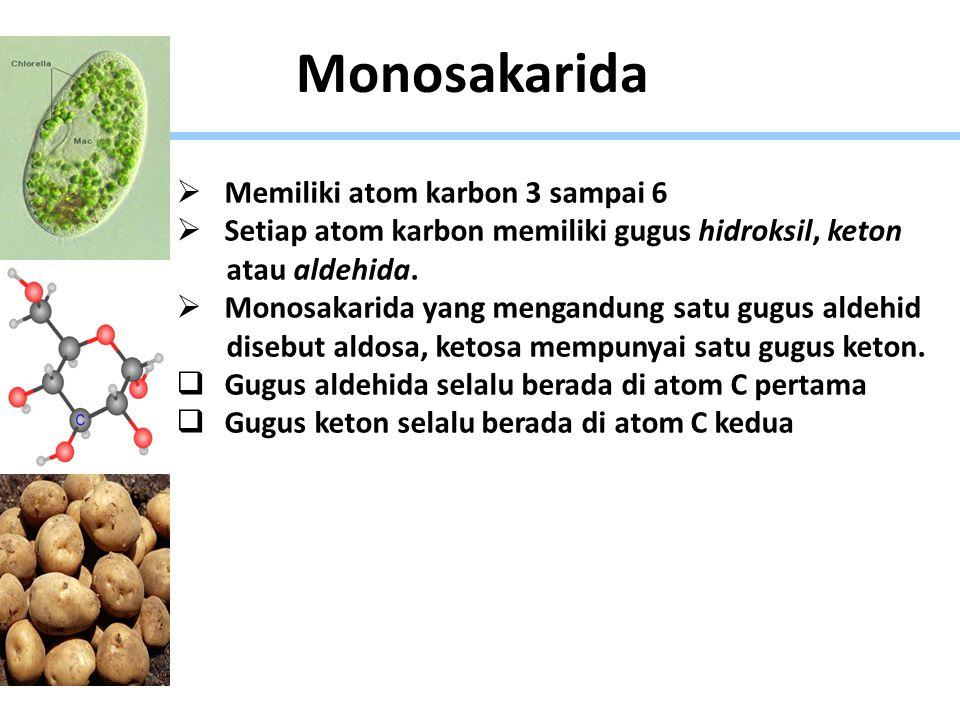 Monosakarida  Memiliki atom karbon 3 sampai 6  Setiap atom karbon memiliki gugus hidroksil, keton atau aldehida.  Monosakarida yang mengandung satu