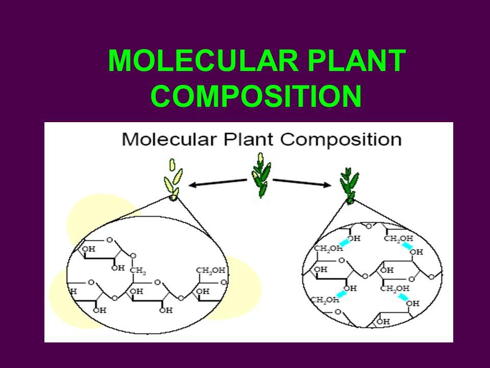 MOLECULAR PLANT COMPOSITION