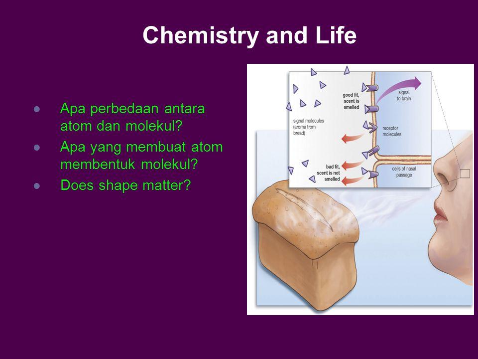 Chemistry and Life Apa perbedaan antara atom dan molekul.