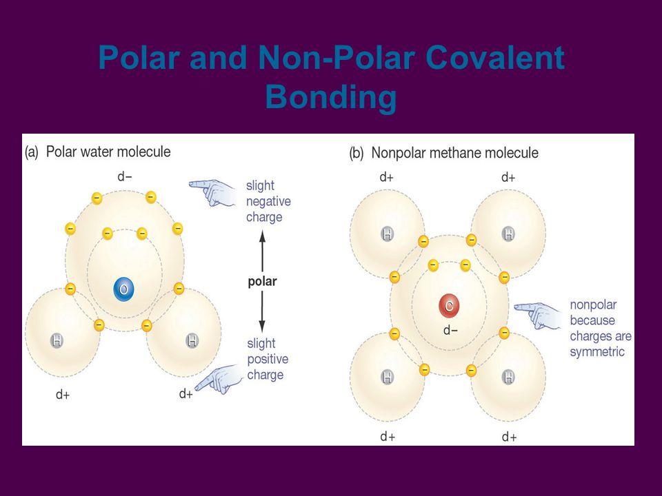 Polar and Non-Polar Covalent Bonding