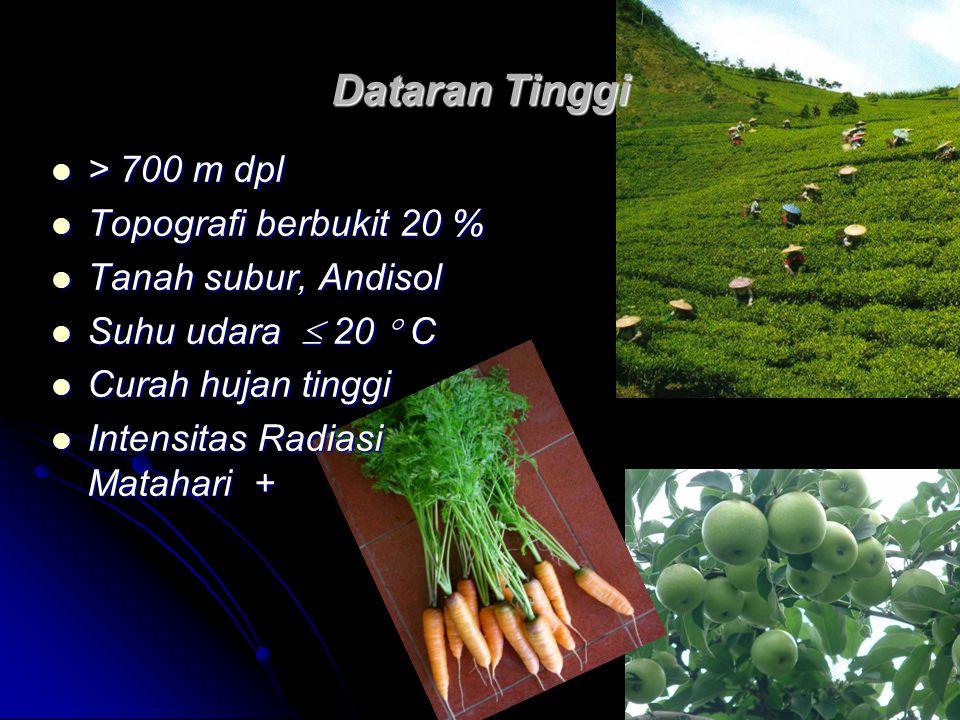 Dataran Tinggi > 700 m dpl > 700 m dpl Topografi berbukit 20 % Topografi berbukit 20 % Tanah subur, Andisol Tanah subur, Andisol Suhu udara  20  C S
