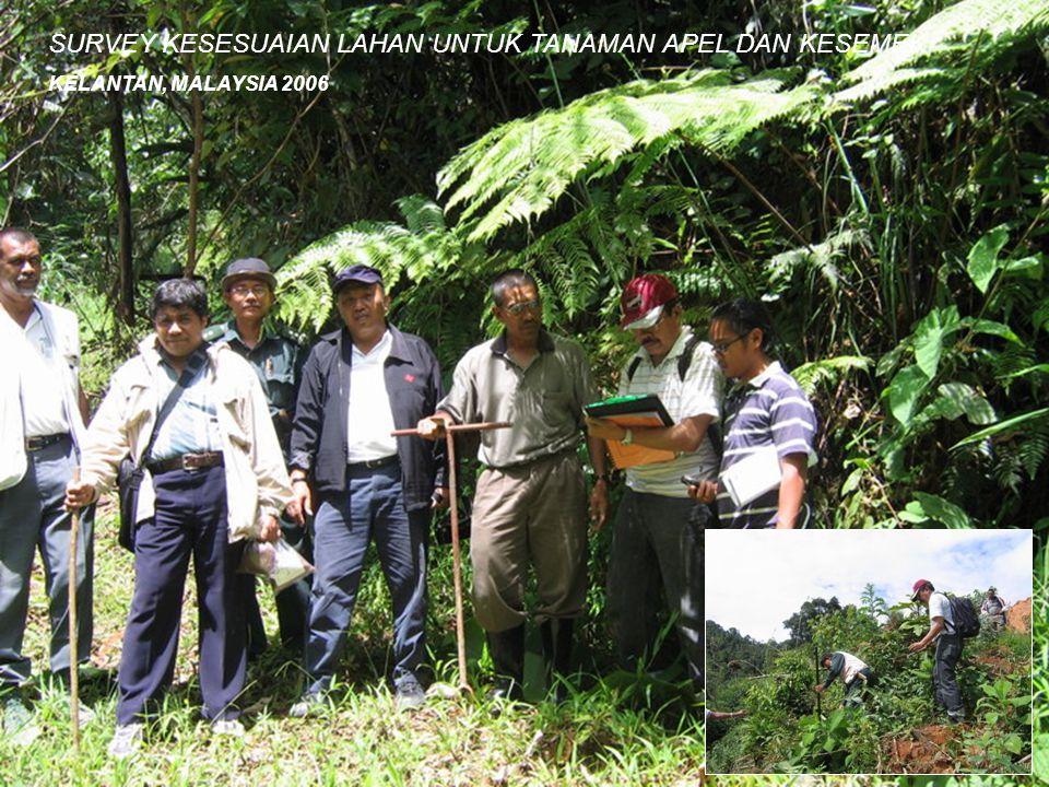 SURVEY KESESUAIAN LAHAN UNTUK TANAMAN APEL DAN KESEMEK KELANTAN, MALAYSIA 2006