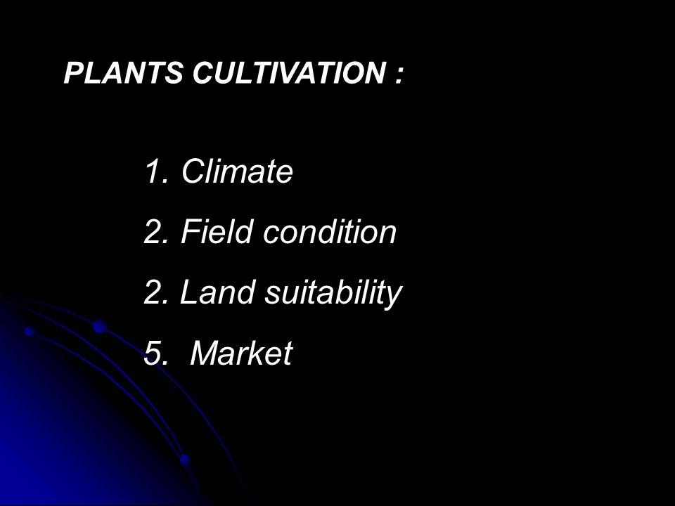 1.IKLIM Klasifikasi Iklim Berdasar Pertumbuhan Vegetasi a.