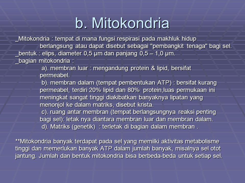 b. Mitokondria _ Mitokondria : tempat di mana fungsi respirasi pada makhluk hidup berlangsung atau dapat disebut sebagai