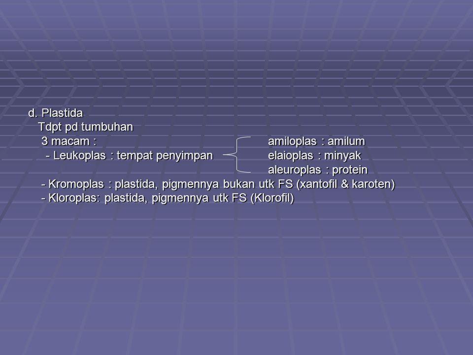 d. Plastida Tdpt pd tumbuhan Tdpt pd tumbuhan 3 macam : amiloplas : amilum 3 macam : amiloplas : amilum - Leukoplas : tempat penyimpan elaioplas : min