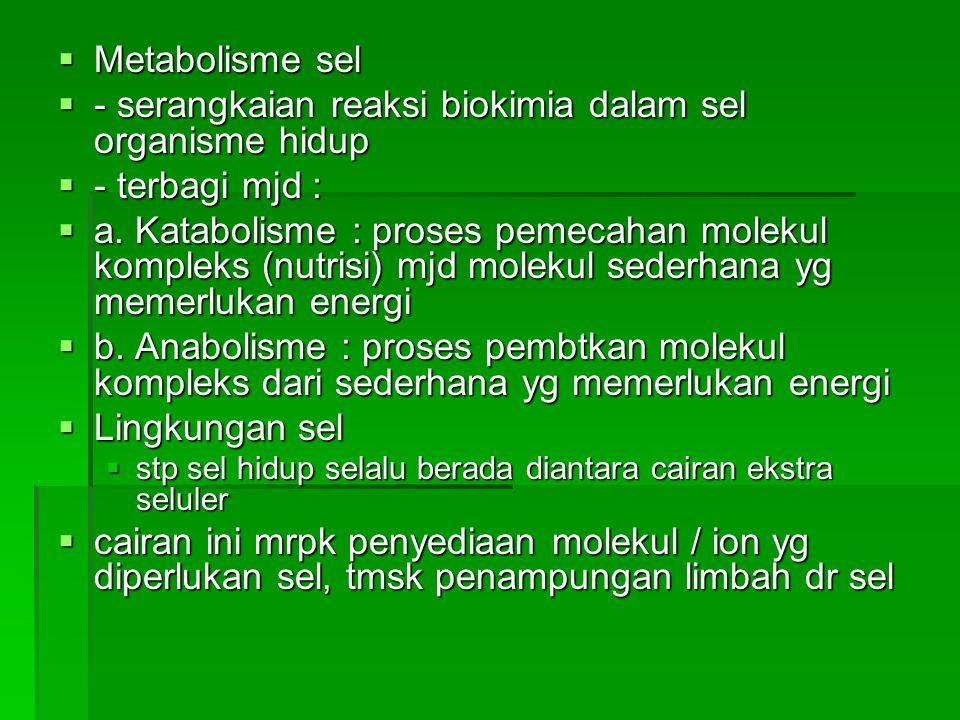  Metabolisme sel  - serangkaian reaksi biokimia dalam sel organisme hidup  - terbagi mjd :  a. Katabolisme : proses pemecahan molekul kompleks (nu