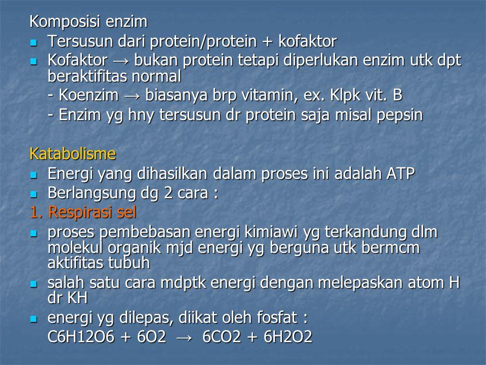 Komposisi enzim Tersusun dari protein/protein + kofaktor Tersusun dari protein/protein + kofaktor Kofaktor → bukan protein tetapi diperlukan enzim utk