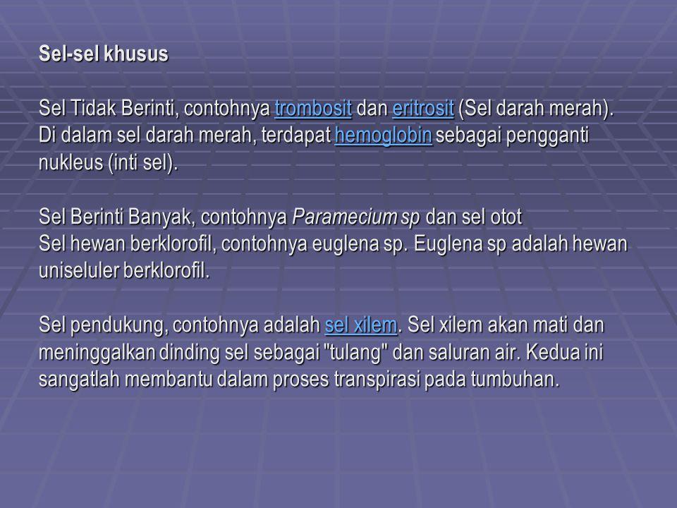 Prokariotik Dan Eukariotik