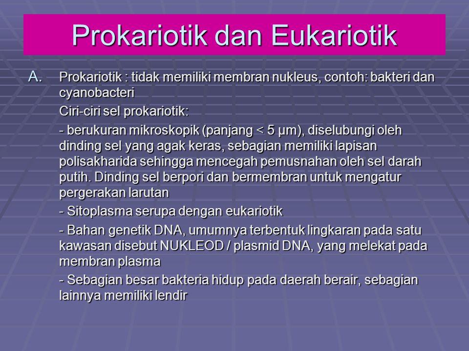 Prokariotik dan Eukariotik A. Prokariotik : tidak memiliki membran nukleus, contoh: bakteri dan cyanobacteri Ciri-ciri sel prokariotik: - berukuran mi