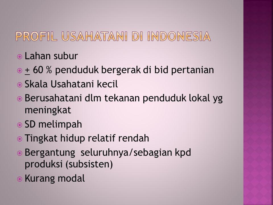  Lahan subur  + 60 % penduduk bergerak di bid pertanian  Skala Usahatani kecil  Berusahatani dlm tekanan penduduk lokal yg meningkat  SD melimpah