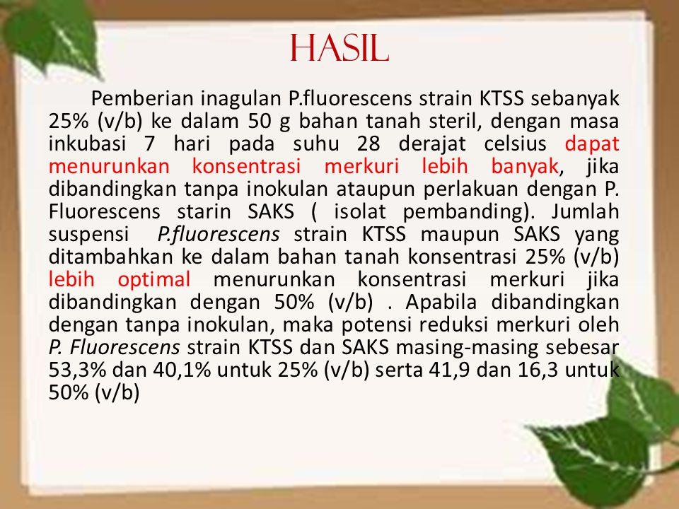 Hasil Pemberian inagulan P.fluorescens strain KTSS sebanyak 25% (v/b) ke dalam 50 g bahan tanah steril, dengan masa inkubasi 7 hari pada suhu 28 deraj